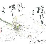 2014年6月の絵手紙エッセー『風のうた』