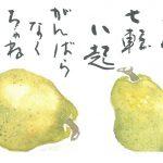 2014年10月の絵手紙エッセー『七転八起』