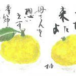 2016年12月の絵手紙エッセー『柚と母さん』