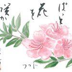 2018年6月の絵手紙エッセー『こころに花を』